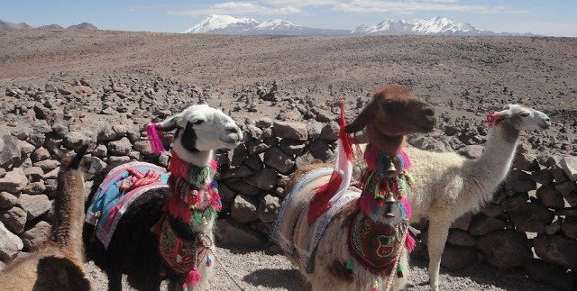 Avventurosamente in Perù, Bolivia e Cile: prima tappa Perù!