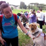 Race for the cure 2013: cane partecipante