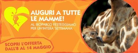 bioparco di roma festa della mamma 2017