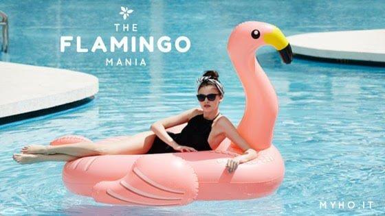 Flamingo mania, W i fenicotteri rosa !