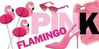 fenicotteri rosa flamingo mania
