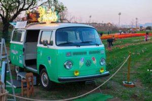 Tulipark roma furgone wolkswagen vintage