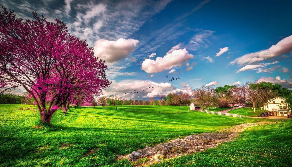 Ecco la Primavera con le giornate del FAI