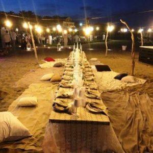 crik crok party viva beach