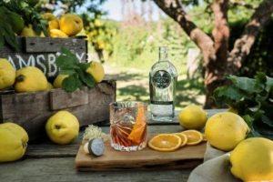8 drink NEGRONI RAMSBURY (by Rinaldi 1957)
