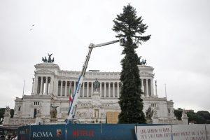 spelacchio piazza venezia